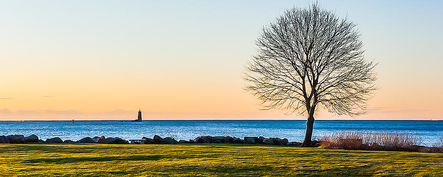 View From Great Island Common by Thomas Lavoie