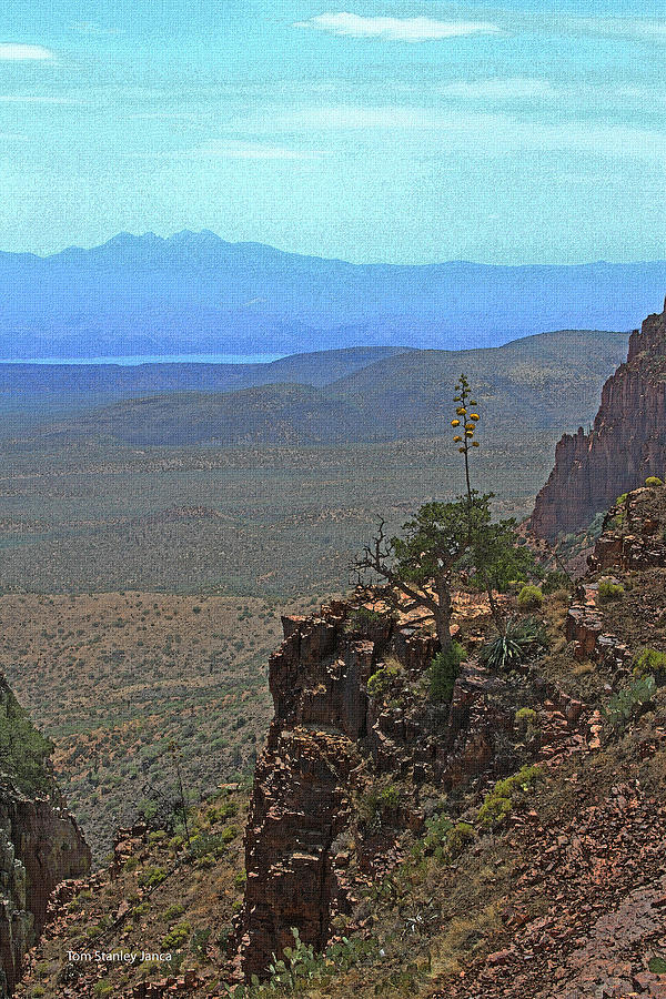 Four Peaks Photograph - View From Parker Creek Canyon by Tom Janca