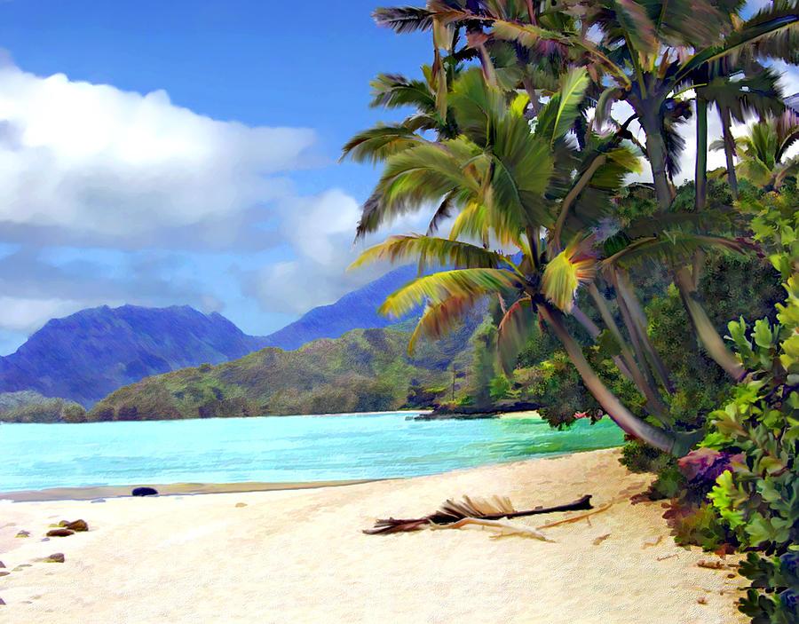 Hawaii Photograph - View From Waicocos by Kurt Van Wagner