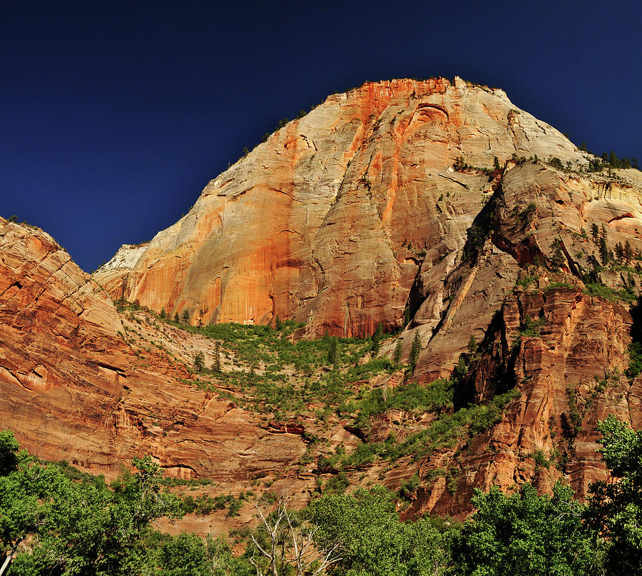 View Near Weeping Rock In Zion National Photograph by Utah-based Photographer Ryan Houston