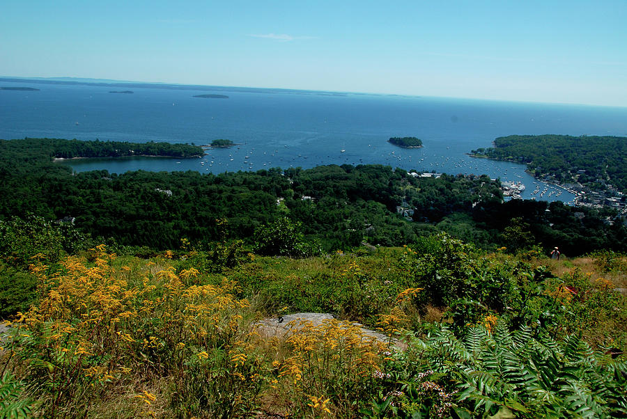 View Of Camden, Maine Photograph by Andrea Sperling