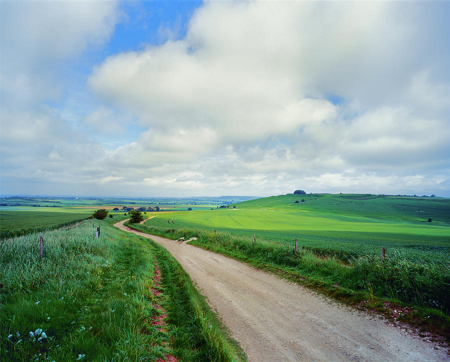 Horizontal Photograph - View Of Road Passing Through A Field by Panoramic Images