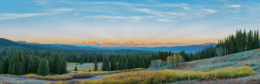 Forest Photograph - View Of The Grand Teton Mountains by Richard and Susan Day