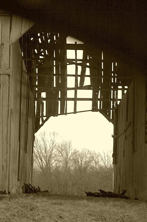 View Through Broken Barn Door Photograph By Thia Stover