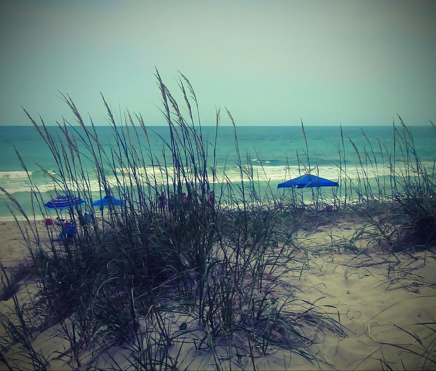 Beach Photograph - View Thru The Beach Grass by Cathy Lindsey