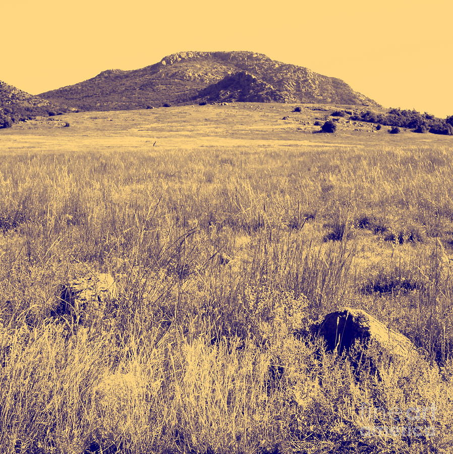 Scenic Photograph - View To A Mountain by Mickey Harkins