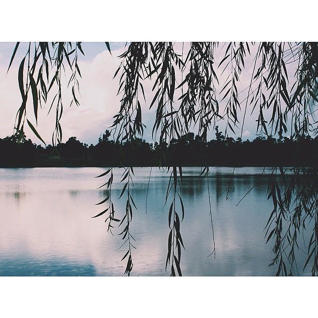 Lake Photograph - Views by Blake Fountain