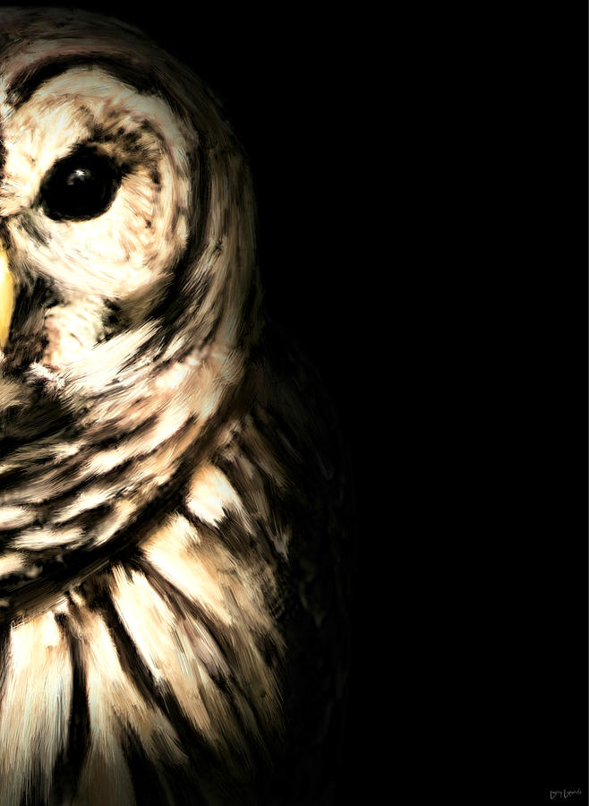 Owl Photograph - Vigilant In Darkness by Lourry Legarde