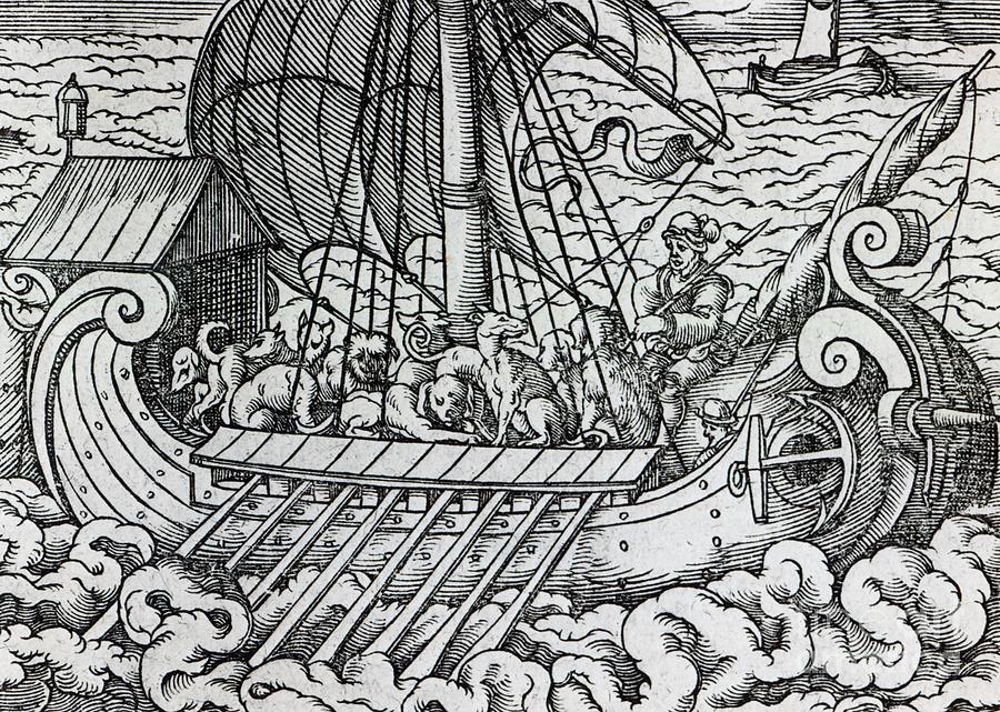 Ship; Boat; Animals; Dogs; Dog; Oars; Transporting; Sailing; Sail; Voyage; Sea; Waves; Rowing; Transportation; Vikings; Rough Seas; Medieval Drawing - Viking Ship by German School