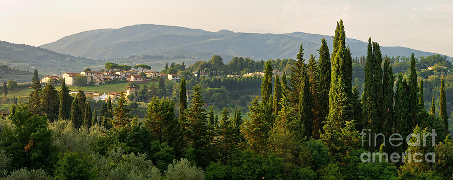 Village And Cypresses Photograph