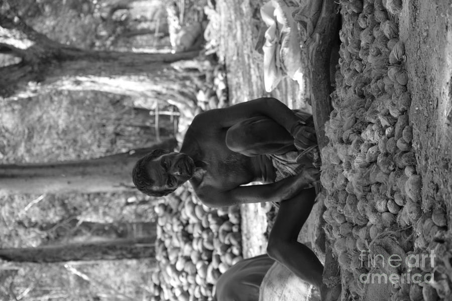 Andaman And Nicobar Island Digital Art - Village Farmer  by Bobby Mandal
