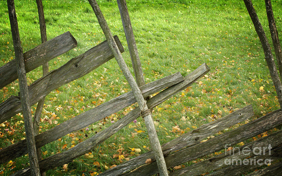 Old Wood Fence Photograph - Village Fence by Jolanta Meskauskiene