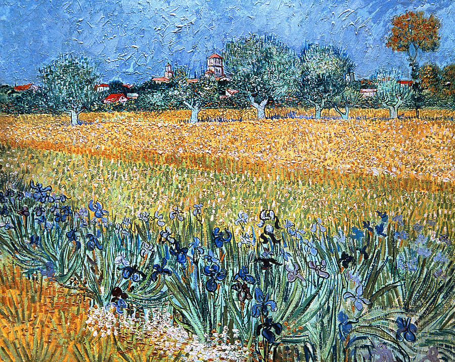 Field With Flowers Near Arles Painting - Field With Flowers Near Arles by Vincent van Gogh