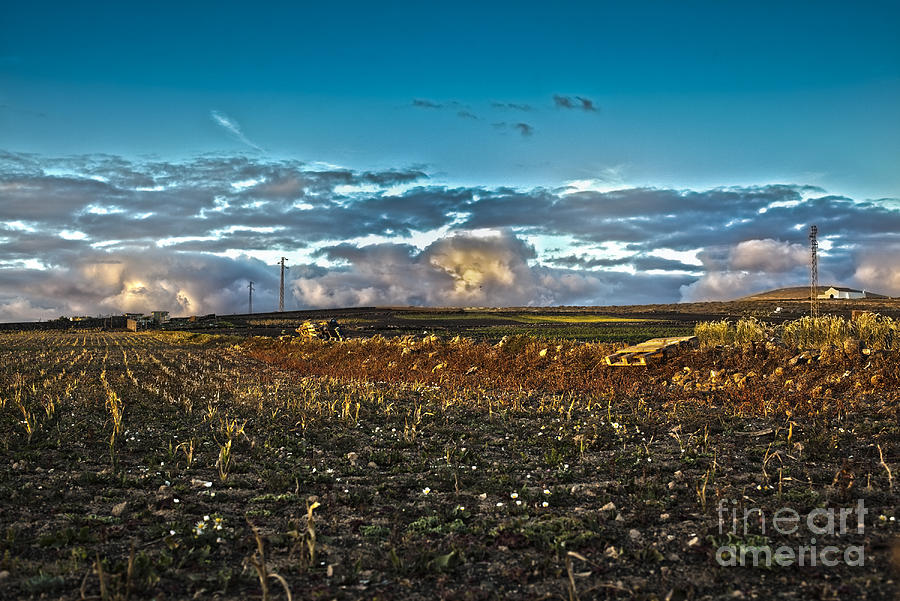 Cloudscape Photograph - Vineyard In Lava by Patricia Hofmeester