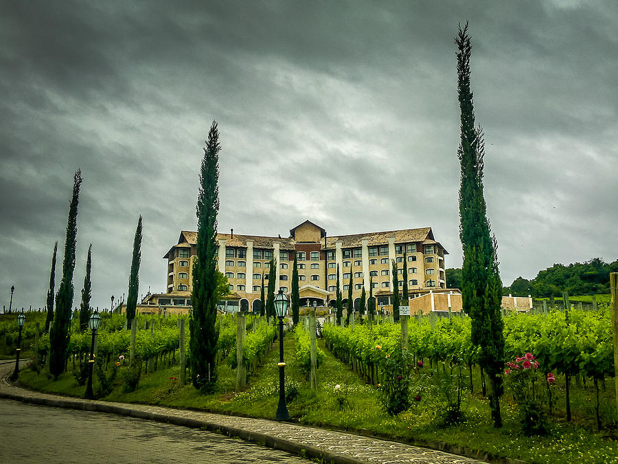 Vineyards Photograph - Vineyards And Chateau by Fabio Giannini
