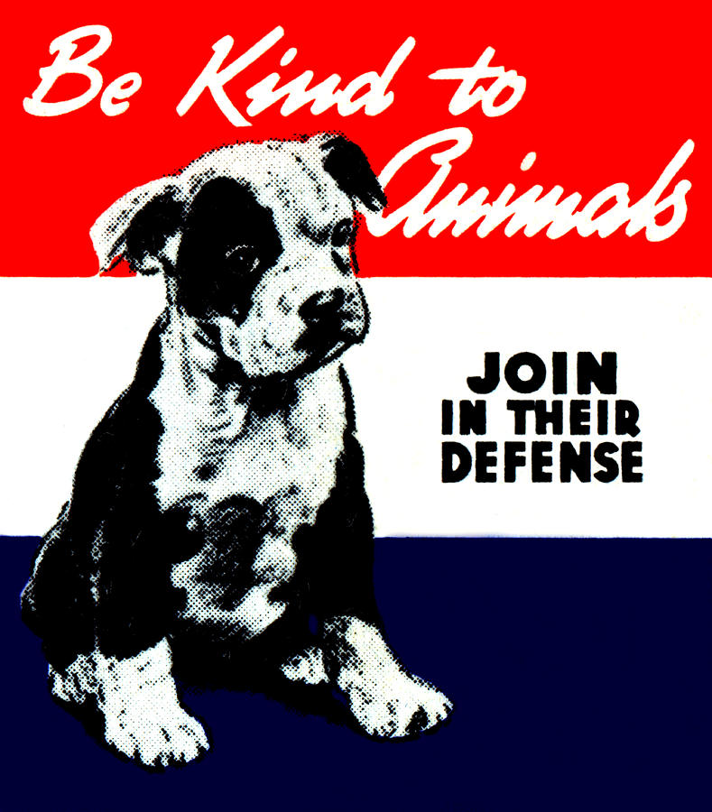 Vintage Animal Kindness Poster Painting By Historic Image