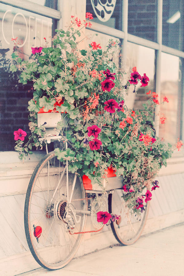 Bicycle Photograph - Vintage Bicycle Flowers Photograph by Elle Moss