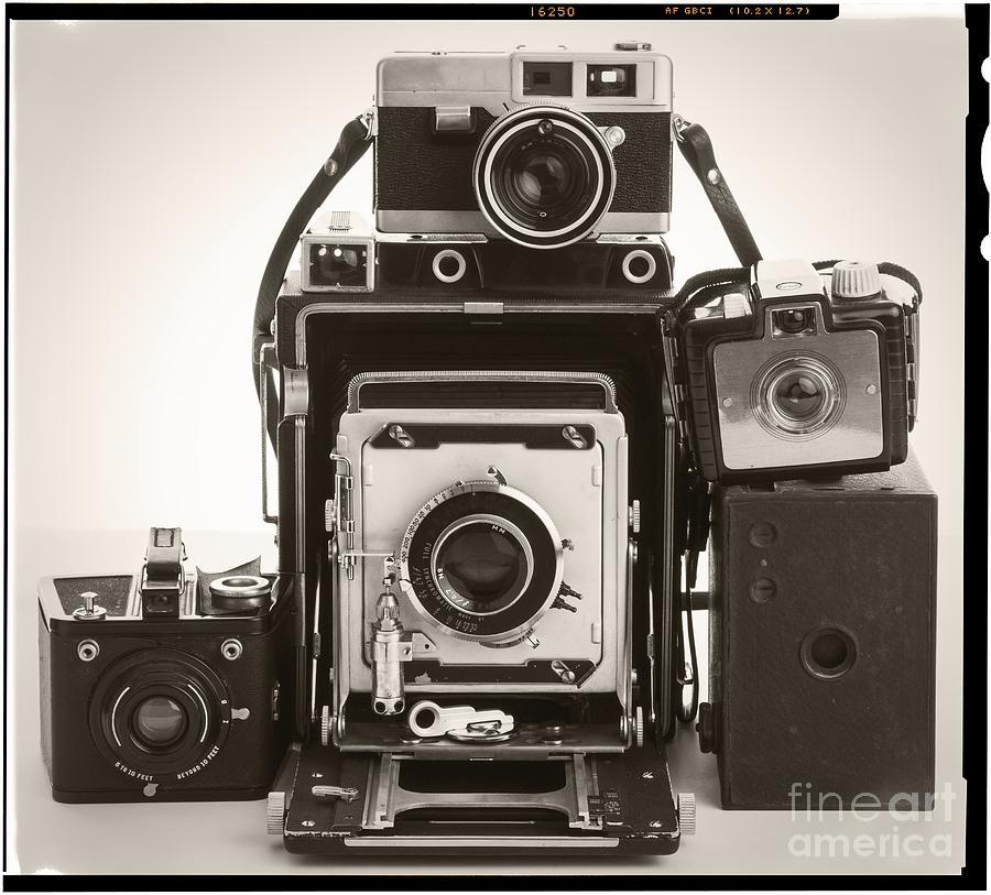 Cameras Photograph - Vintage Cameras by Edward Fielding