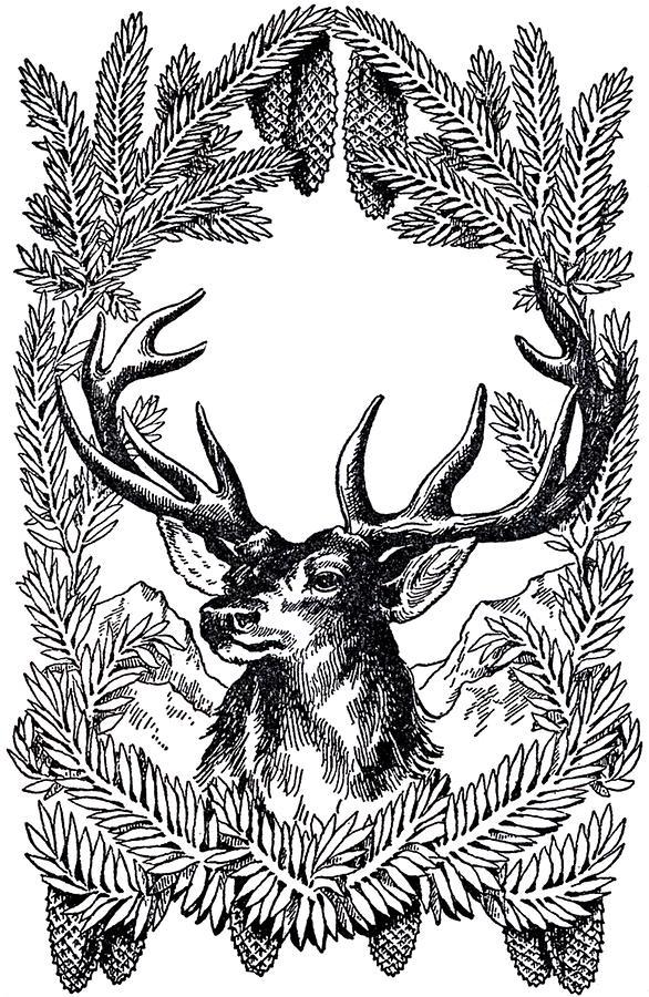 Vintage Christmas , Deer