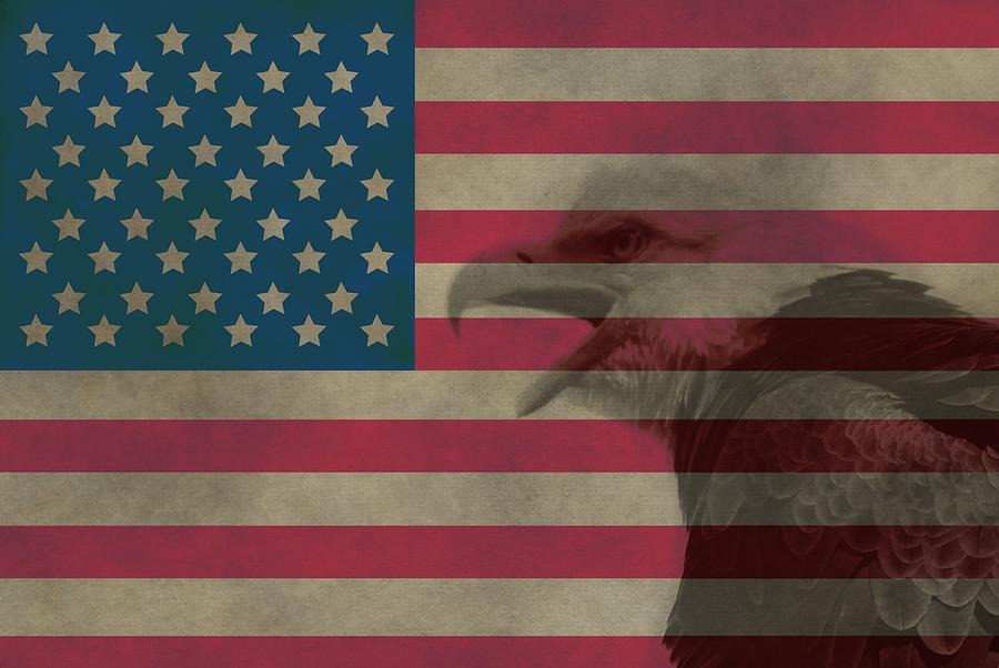 Vintage Flag With Bald Eagle Photograph - Vintage Flag With Bald Eagle by Dan Sproul