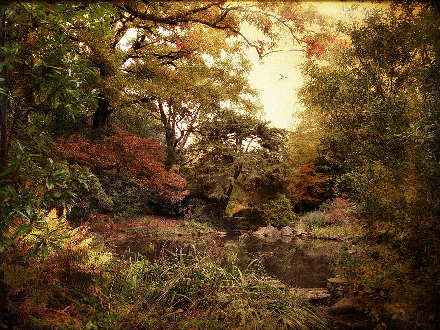 Nature Photograph   Vintage Garden By Jessica Jenney