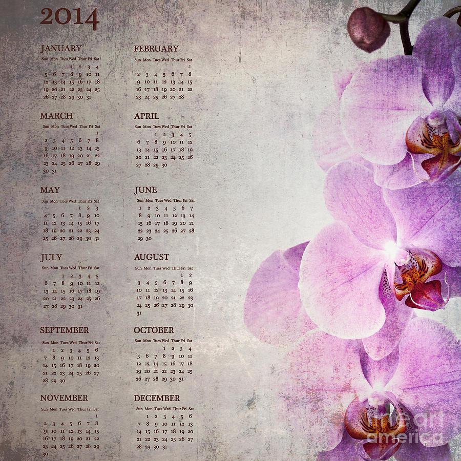 2014 Photograph - Vintage Orchid Calendar For 2014 by Jane Rix