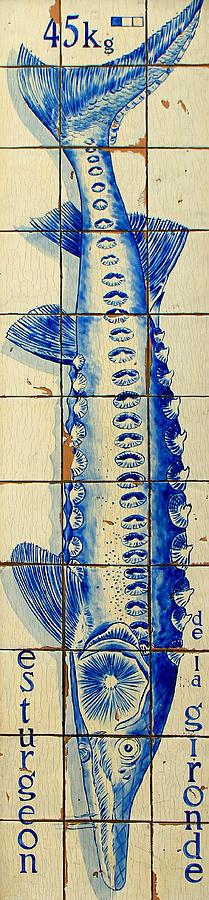 Vintage Seafood Sign 4 Photograph