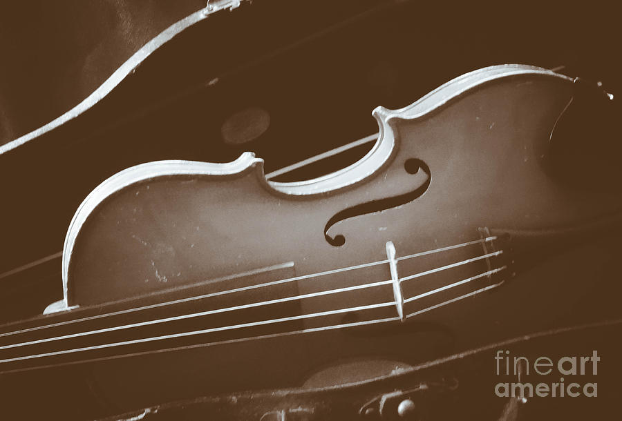 Vintage Violin by Stacy Michelle Smith