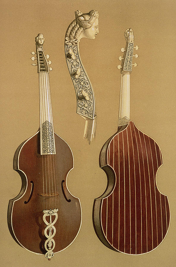 Carved Drawing - Viola Da Gamba, Or Bass Viol by Alfred James Hipkins