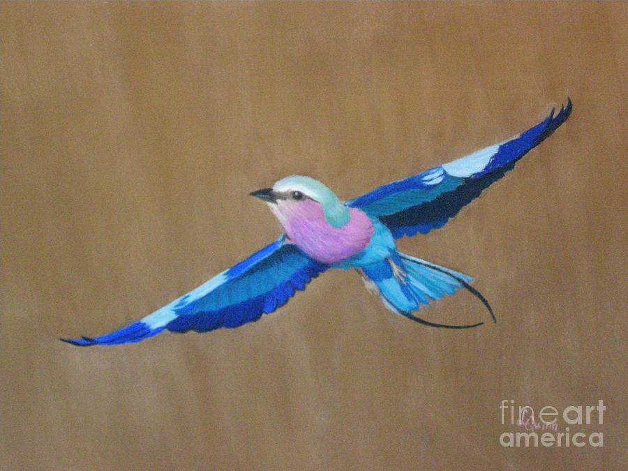 Violet-breasted Roller Bird II by Lynn Quinn