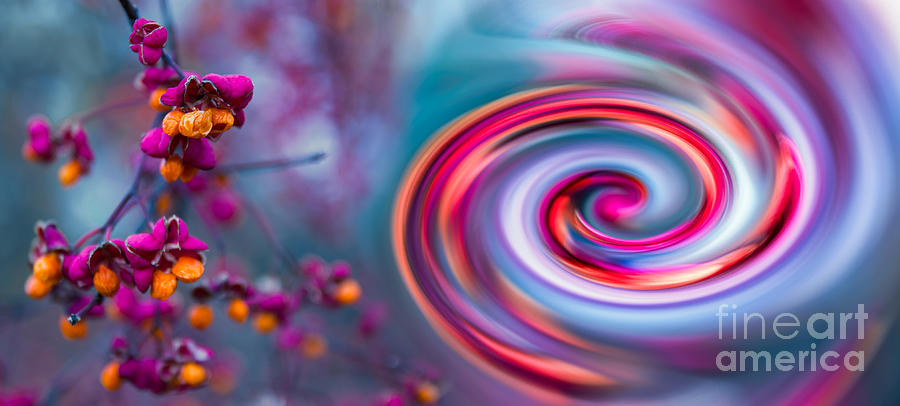 Abstract Photograph - Violet Fall Blossom Collage by Hannes Cmarits