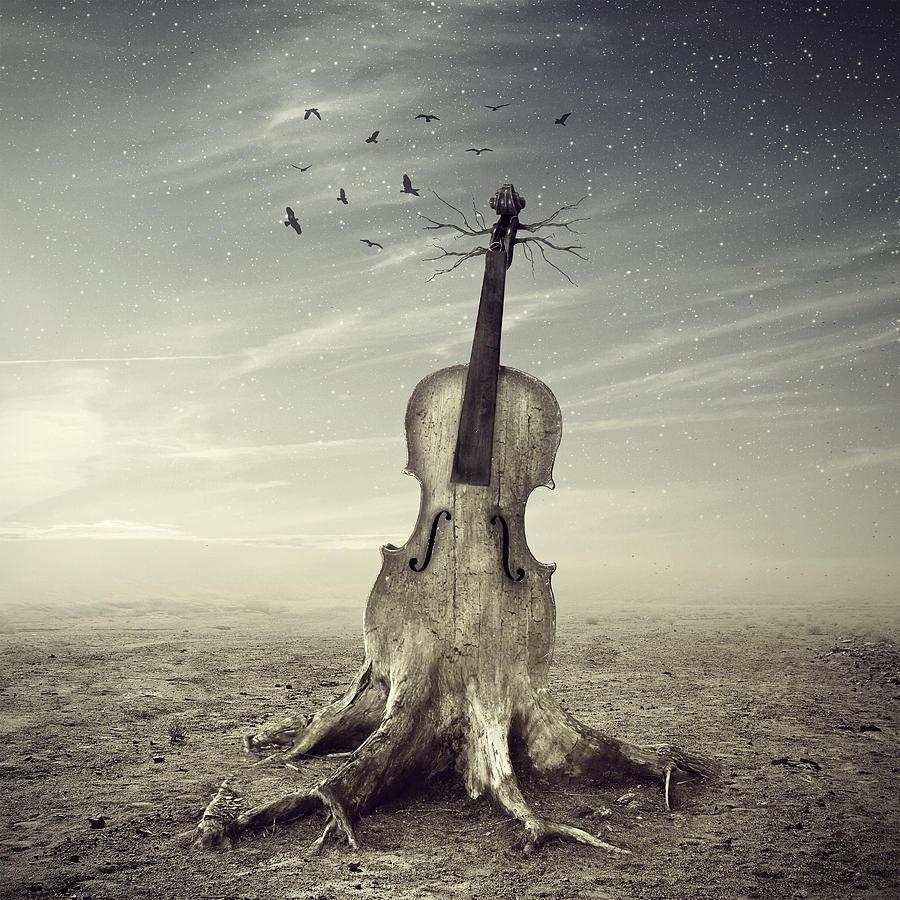 https://images.fineartamerica.com/images-medium-large-5/violin-andrzej-siejenski.jpg