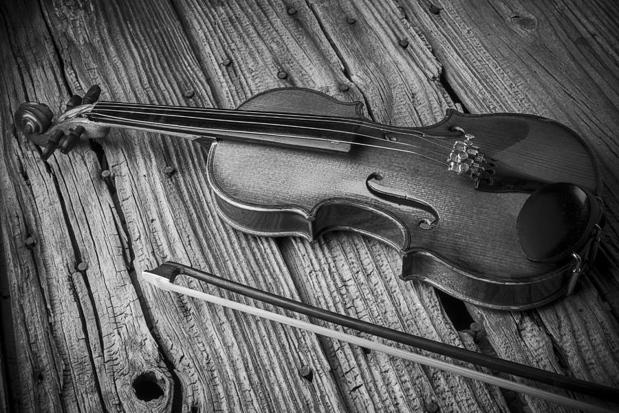 Белая скрипка картинка