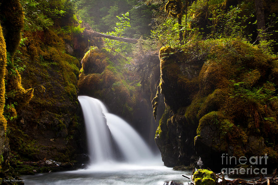 Alaska Photograph - Virgin Creek Falls by Chris Heitstuman
