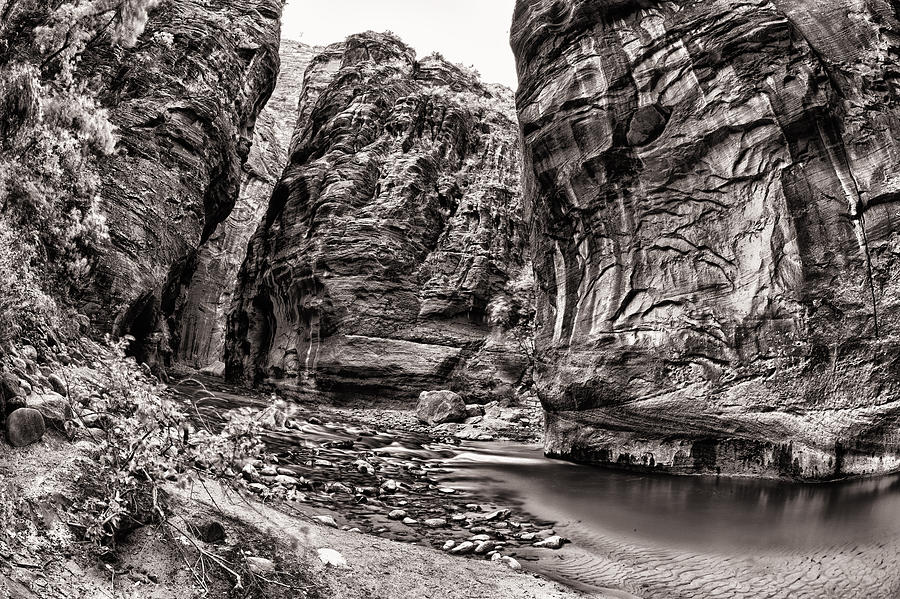 America Photograph - Virgin Narrows Bw by Juan Carlos Diaz Parra