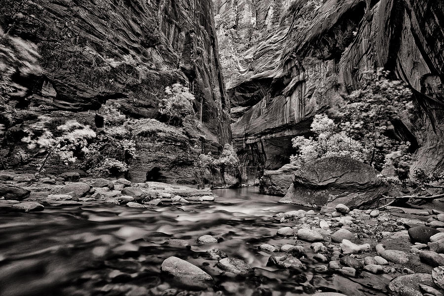 America Photograph - Virgin River Calm by Juan Carlos Diaz Parra