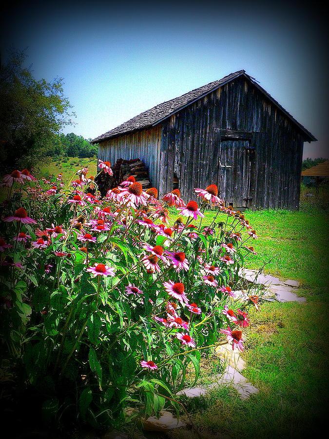 Barn Photograph - Virginia Barn And Flowers by Jo Anna Wycoff