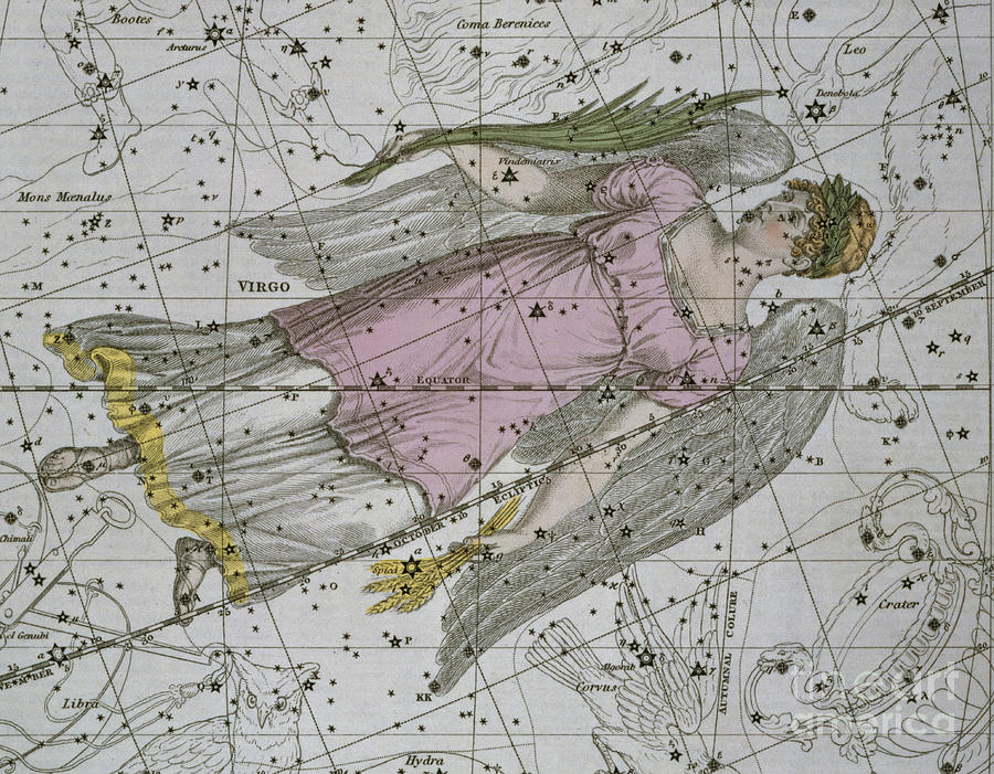 Zodiacal Painting - Virgo From A Celestial Atlas by A Jamieson