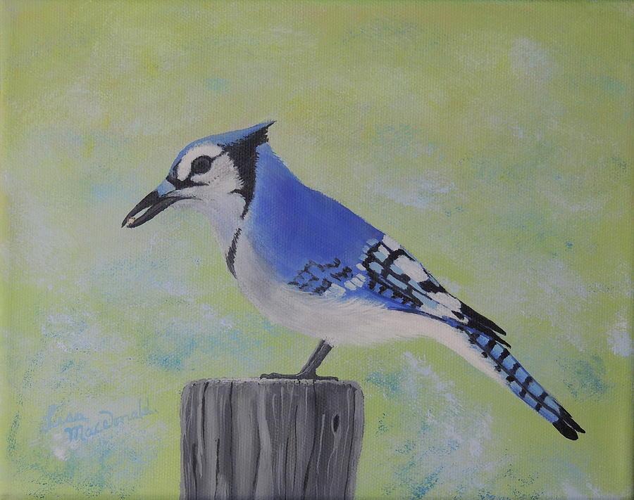 Bluejay Painting - Visiting Bluejay by Lisa MacDonald