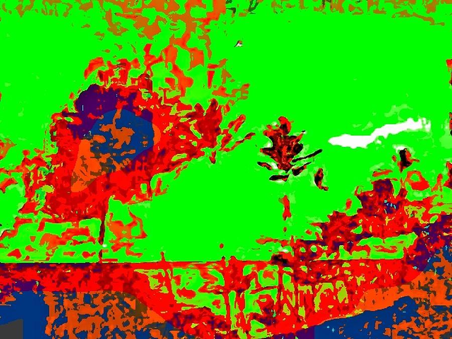 Vista Digital Art by Kelly McManus
