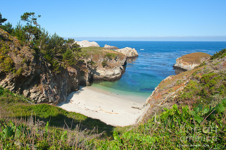 Point Lobos Photograph - Vista Of China Cove At Point Lobos State Reserve California by Artist and Photographer Laura Wrede