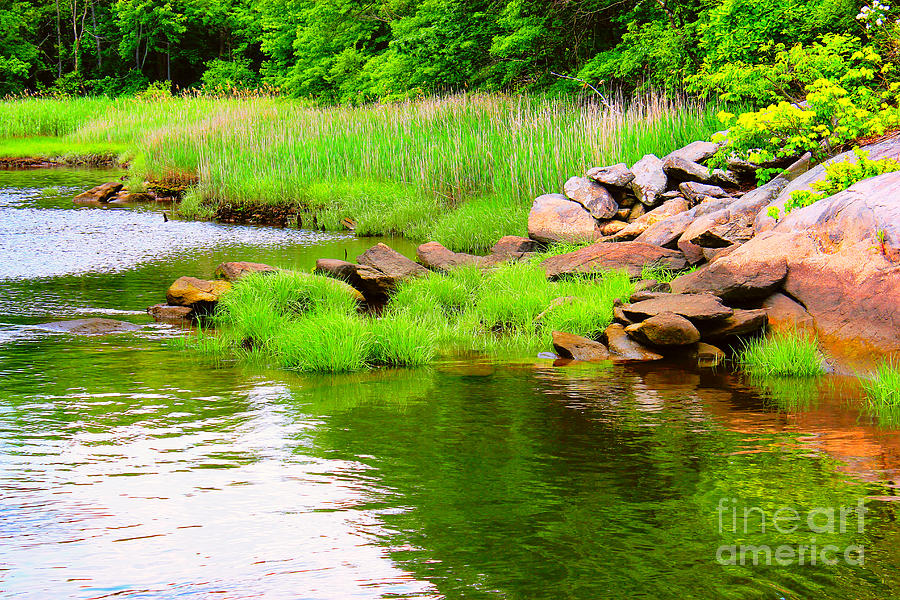 Water Photograph - Visual Stillness by Judy Palkimas