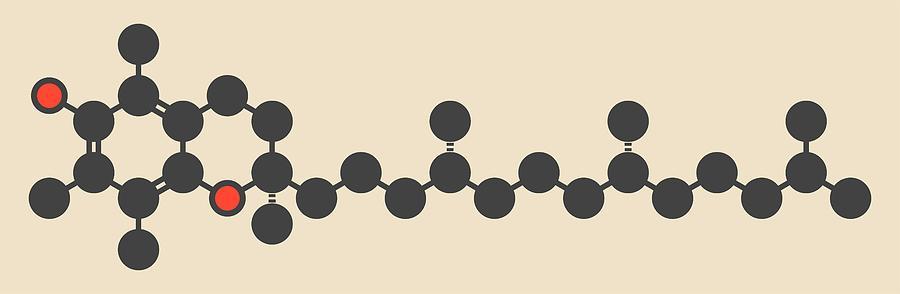 Vitamin Photograph - Vitamin E Molecule by Molekuul