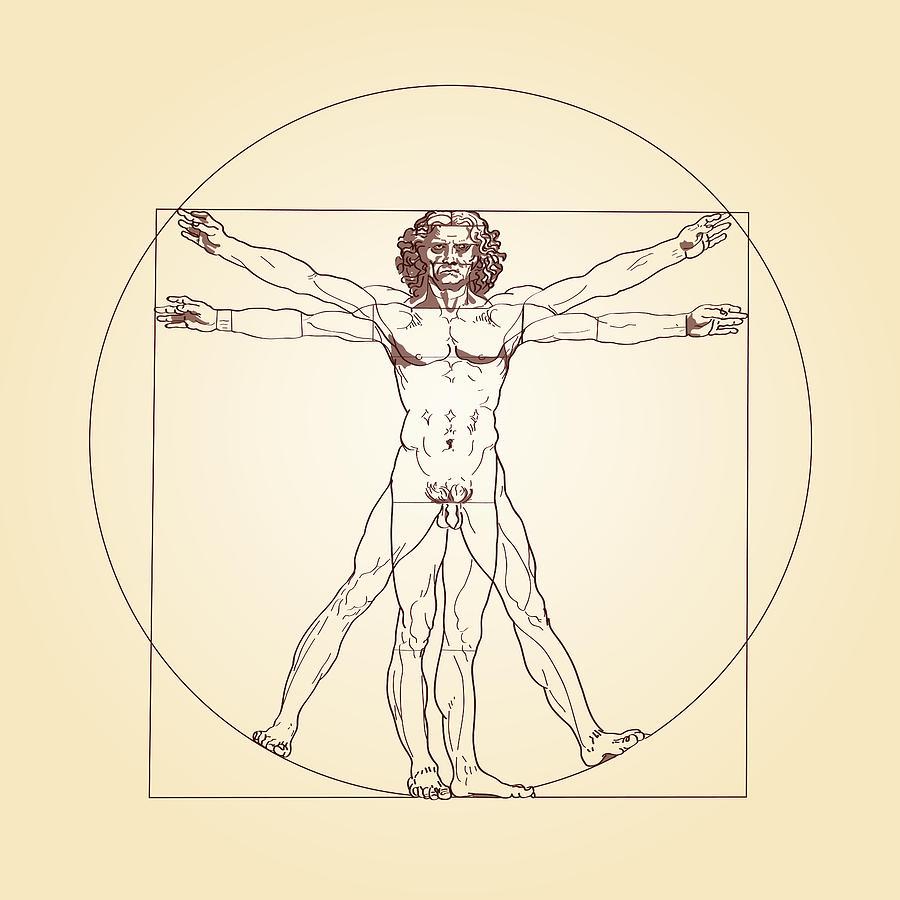 Vitruvian Man Leonardo Da Vinci Digital Art by Peter Hermes Furian