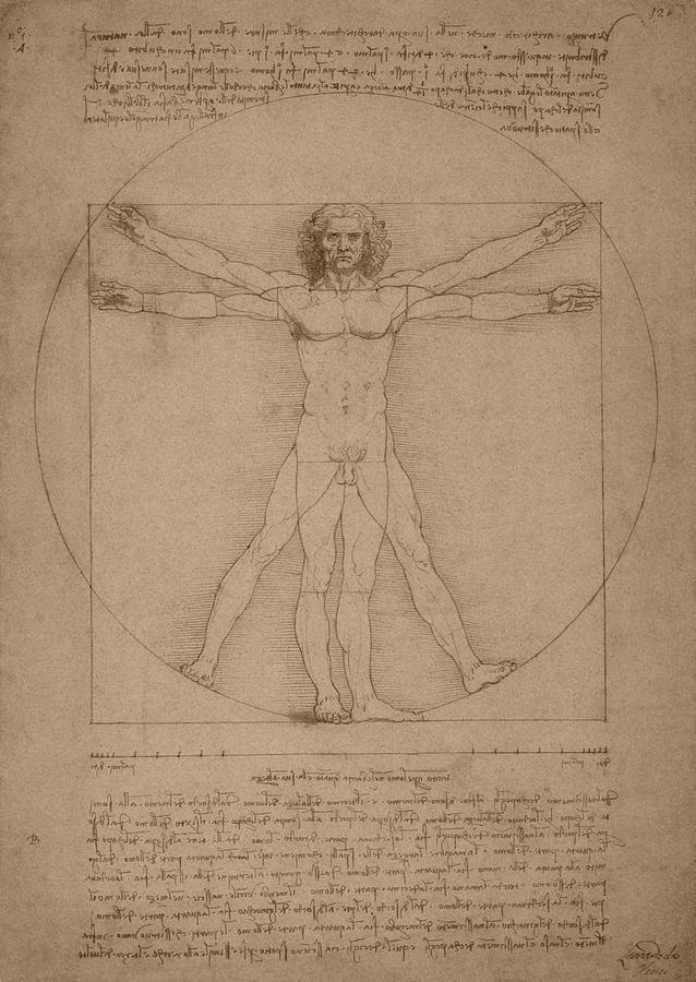 Leonardo Da Vinci Drawing - Vitruvian Man  by War Is Hell Store