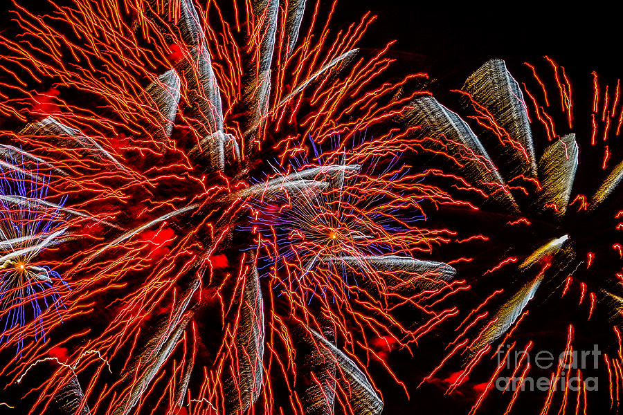 Fireworks Photograph - Vivid Red by Christopher Biggers