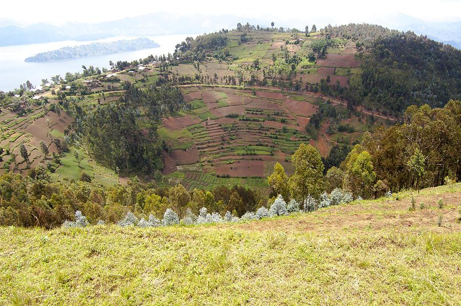 Rwanda Photograph - Volcano Farming by Paul Weaver