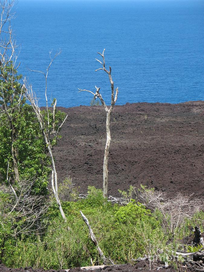 Volcano Rocks - Ile De La Reunion - Reunion Island - Ocean Indien - Indian Ocean - Volcano - Volcan - Rocher - Mer - Sea  Photograph - Volcano Rocks - Ile De La Reunion - Reunion Island by Francoise Leandre