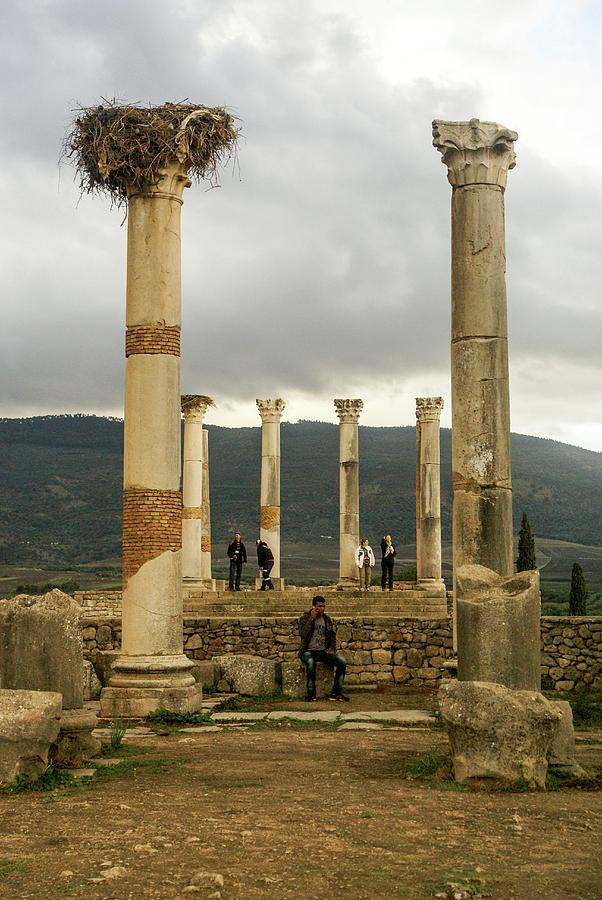 Africa Photograph - Volubilis Archeological Site by Photostock-israel