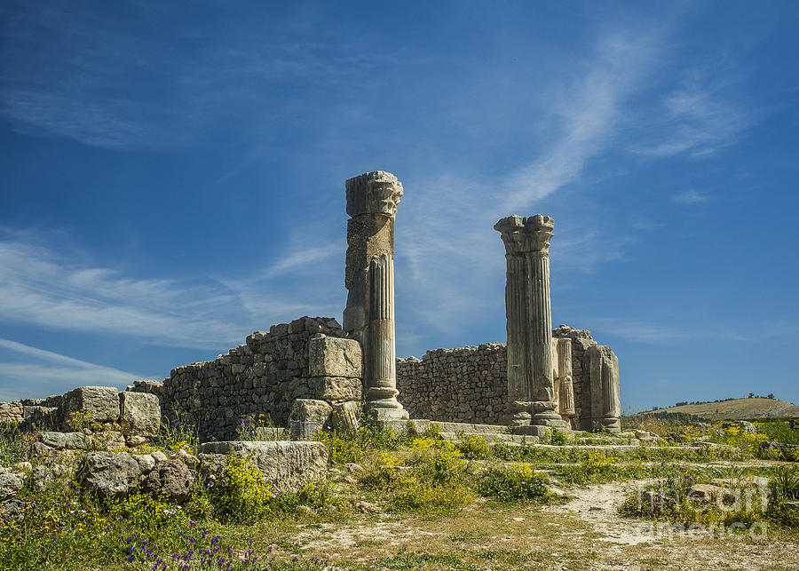 Roman Pillars At Volubilis Photograph